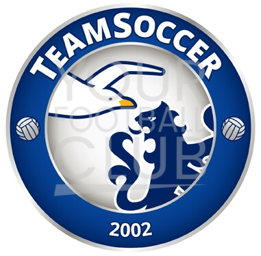 design a football badge-Bespoke_Football_Badge_Logo_Design_TeamSoccer_Badge
